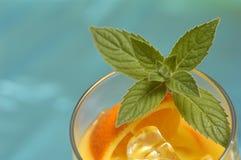 drinkorange Royaltyfria Foton