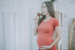 Drinks Alcohol. Pregnant Girl.Bad Habits. Dangers. stock photography
