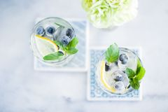 summer cocktails for guests, home party - drinks, cocktails and celebration styled concept stock photos