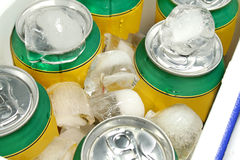 Drinks Cooler Stock Photo