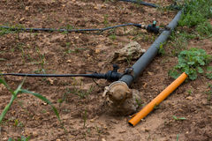 Drip Irrigation System. Water saving drip irrigation Stock Image