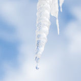 Drip. A single drip falling from an icicle Stock Photo