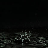Dripping fluid, formed a dark crater, splashes and drops of water. Stock Images
