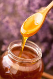 Dripping honey from wooden spoon Royalty Free Stock Photography