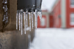Dripping icicles Stock Photo