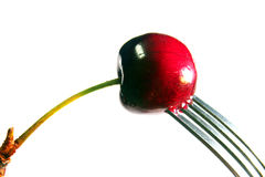 Dripping Red. Sweet Cherry dripping and pinned by a fork stock photography