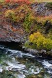 Driva峡谷细节在秋天, dovrefjell,挪威 库存照片