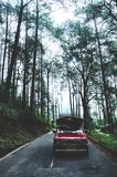 Drive on the road to the forest. stock photos