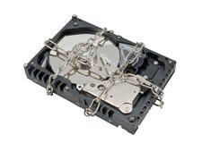 Drive del hard disk Immagini Stock