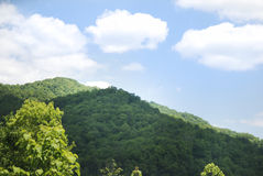Drive through Smokey Mountains in Tennessee. Royalty Free Stock Photo