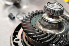 Drive sprocket wheel. Motorcycle sprocket drive with selective focus Stock Photography
