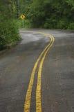 Drive way. Between woods Stock Image