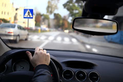 A driver approaching a pedestrian crossing. A car driver approaching a pedestrian crossing royalty free stock image