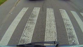 Driver che conduce ai pedoni della città, alle regole di sicurezza stradale ed alle marcature, priorità stock footage