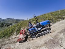Driver on crawler tractor, climbs steeply up into the vineyards Royalty Free Stock Photos