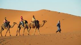 Driver del cammello con il caravan turistico del cammello Immagini Stock Libere da Diritti