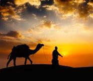 Driver del cammello di Cameleer con i cammelli in dune del deserto Fotografia Stock