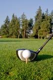 Driver di golf e sfera - verticale Fotografie Stock