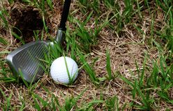 Driver and golf ball. Close-up of the iron golf club with a golf ball royalty free stock photography