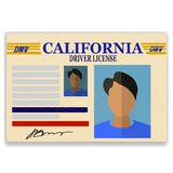 Driver License. Plastic Card  on White Background Stock Photography