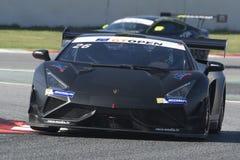 Driver PROCZYK. Lamborghini Gallardo Rex GT3. International GT Open Stock Image