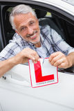 Driver smiling and tearing l plate Stock Photo