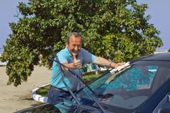 Driver washing a car Stock Images