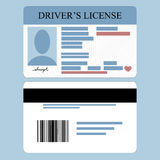 Drivers License. Illustration of driver's license front and back Stock Photography