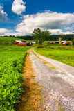 Driveway and farm buildings in rural Baltimore County, Maryland. Stock Photo