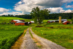 Driveway and farm buildings in rural Baltimore County, Maryland. Stock Images