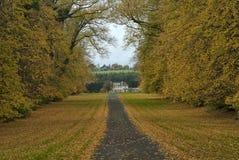Driveway with garden in autumn, ireland Stock Photos