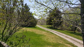Driveway in may royalty free stock images