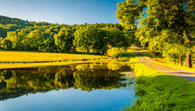Driveway and trees reflecting in a pond in the Shenandoah Valley Stock Photo