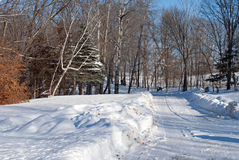 A Driveway After a Winter Storm Stock Image