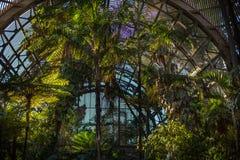 drivhus arkivfoton