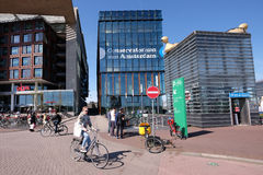 Drivhus i Amsterdam arkivfoton