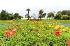 drivhuset blommar francisco san Royaltyfri Fotografi