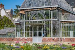 Drivhushus av växter Fotografering för Bildbyråer