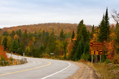 Algonquin Park Road In Fall Stock Photography