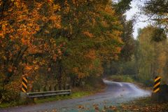 Autumn Colors along a country road. Driving along a country road in a misty rain surrounded with autumn colors Royalty Free Stock Photo