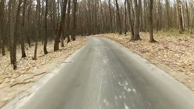 Driving along forest road stock video footage