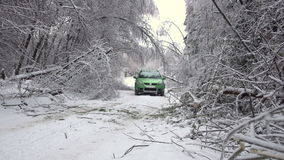 Driving along road with fallen trees, after intense ice storm. Cars go along road with fallen trees, after intense ice storm stock video