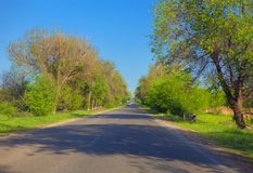Road through green trees. Driving on asphalt road with green trees Stock Photo