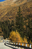 Driving in Autumn. Driving on the Italian Alps during novemeber stock images