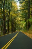 Driving in autumn Royalty Free Stock Photo