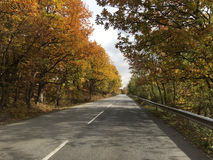 Driving through Bulgaria. Driving through and autumn landscape in Bulgaria Royalty Free Stock Image