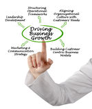 Driving Business Growth. Presenting diagram of Driving Business Growth Stock Images