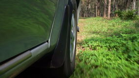 Driving a car in the forest stock video