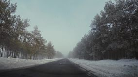 Driving car in winter in fog. HD stock video footage