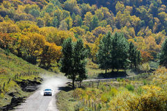 Driving in colorful autumn hill Stock Images